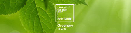 pantone_color_of_the_year_2017_shop_banner-e1481834248303